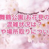 舞鶴公園お花見